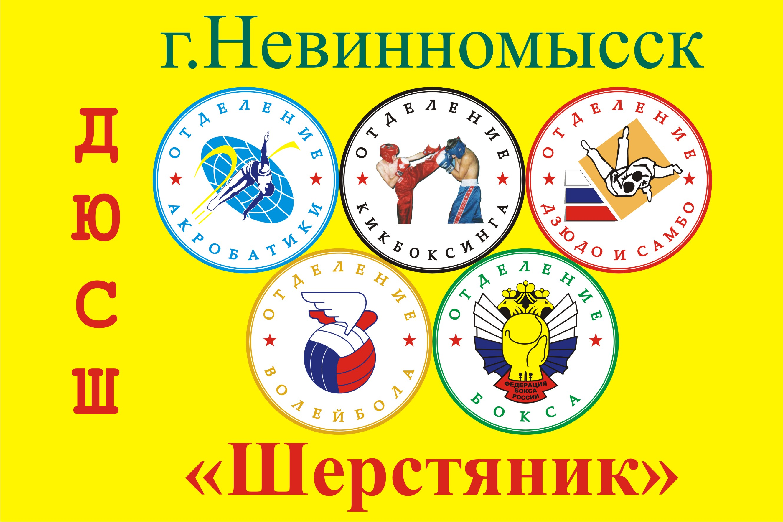 """МБУ ДО ДЮСШ """"Шерстяник"""""""
